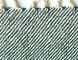 plaid brushed recycled cotton bottle green_